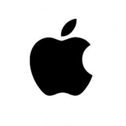 apple delivery partner logo